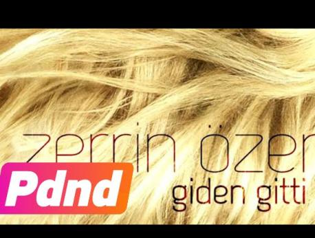 Zerrin Özer Music Photo