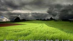 Haydn - String Quartets Hob III - Lark