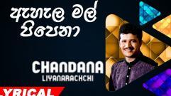 Chandana Liyanarachchi - Ahala Mal Pipena