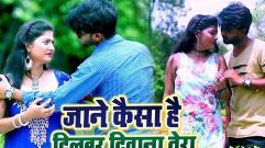 Anil Arji - Jane Kaisa He Dilwar Diwana Tera
