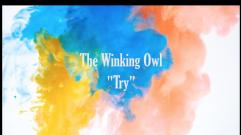 The Winking Owl - Try