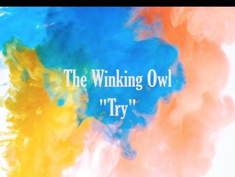 The Winking Owl Music Photo