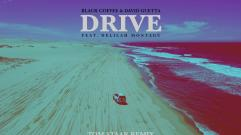 Black Coffee & David Guetta - Drive feat. Delilah Montagu (Tom Staar Remix)