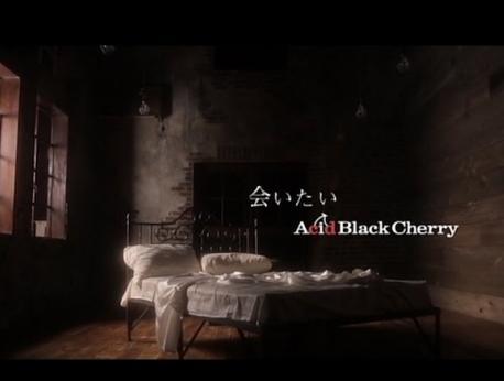 Acid Black Cherry Music Photo