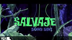 Danny Sanz - Salvaje (Video Letra)