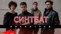 Synthbat (Синтбат) - #Яблоград