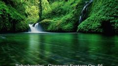 Tchaikovsky - Concerto Fantasy Op. 56