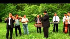 Costica Boieru - Am iubit in viata mea (muzica de petrecere)