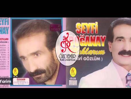 Seyfi Doğanay Music Photo