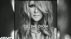 Céline Dion - Thank You (Pseudo Video)