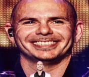 Pitbull Photo