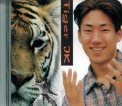 Drunken Tiger Photo