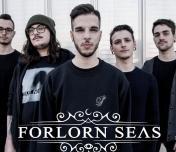 Forlorn Seas Photo