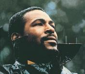 Marvin Gaye Photo